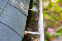 somerset gutter cleaning services